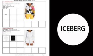 Iceberg-2021春夏订货会